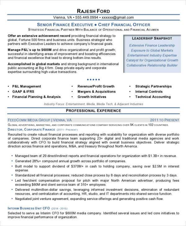 finance executive resume format
