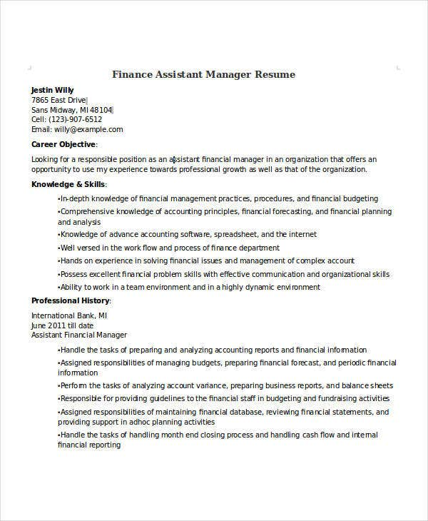 24  free finance resume templates