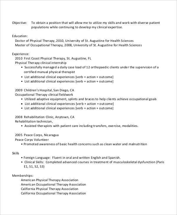 professional work resume example