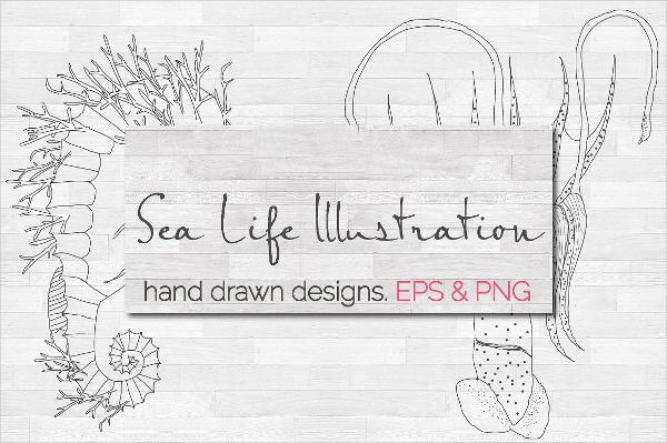 sea-life-illustration