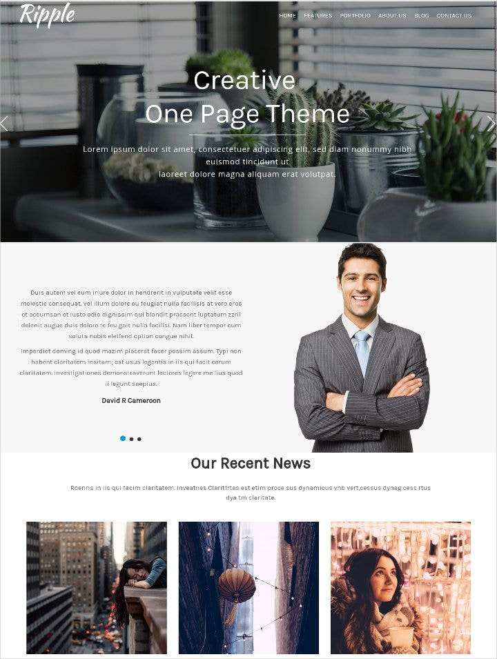 simple one page wordpress theme21