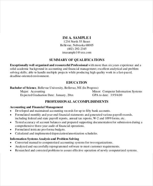 professional business resume example6