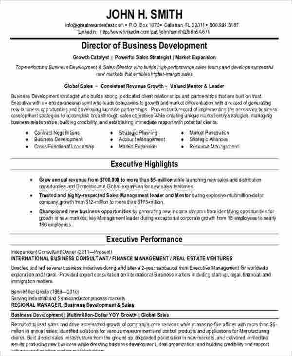 international business consultant resume2