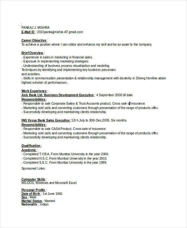 Executive Business Resume  BesikEightyCo