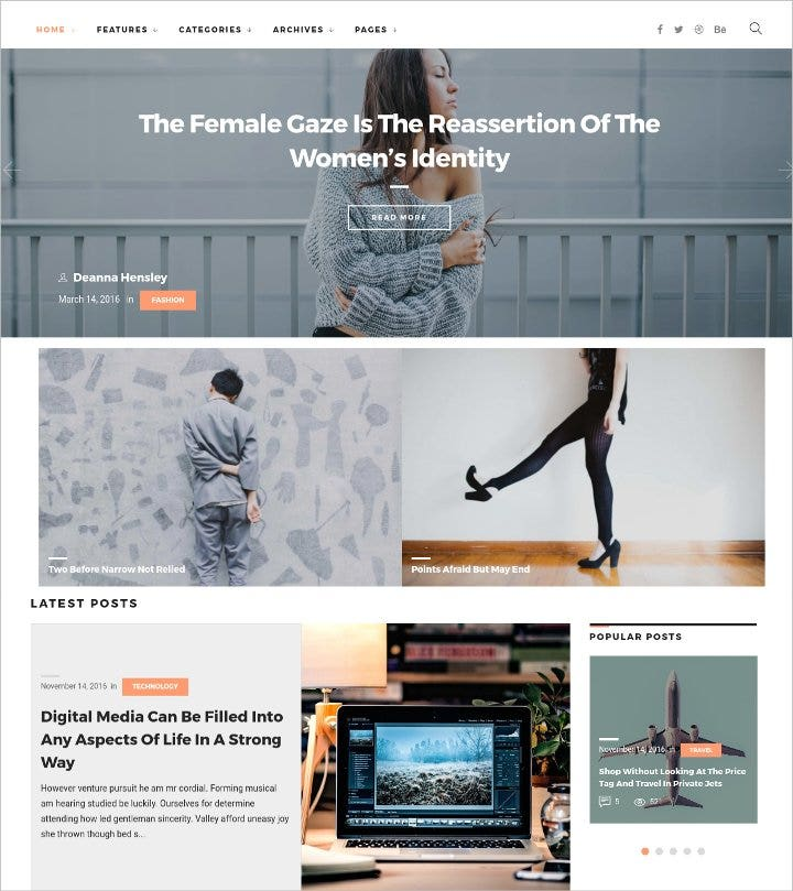 simple and elegant blog theme21