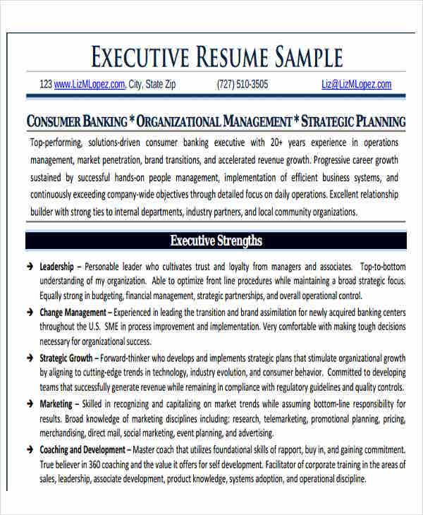 business executive resume sample