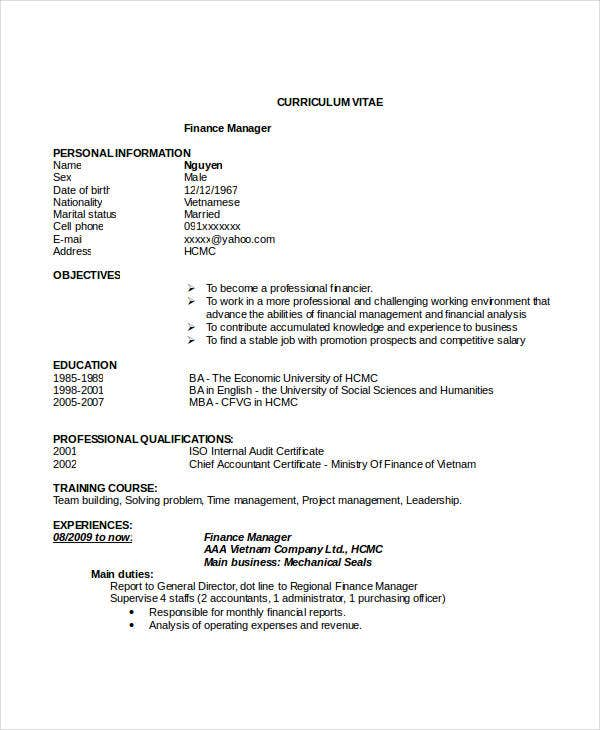 finance resumes 23 free ms word format free
