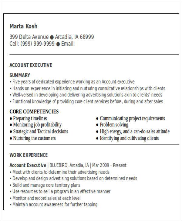 business account executive resume1