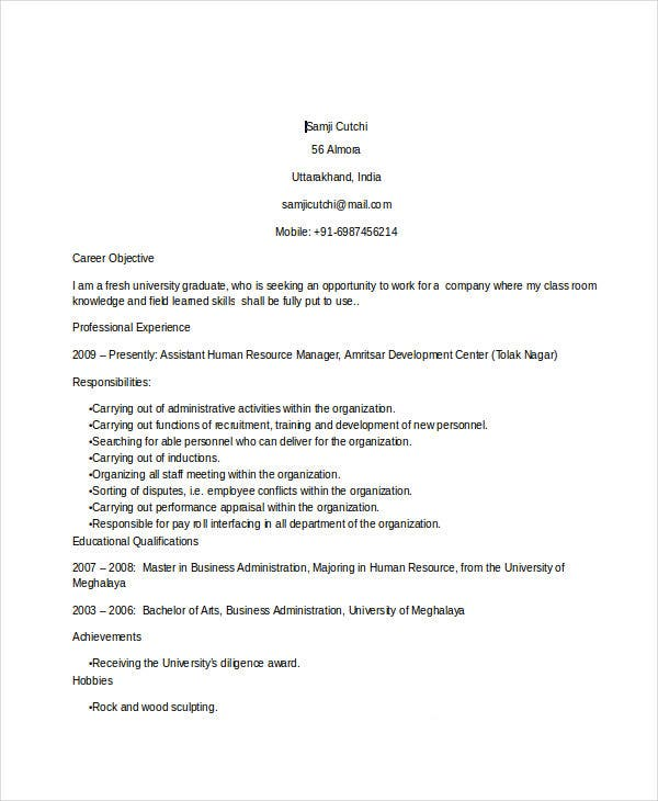 Professional Executive Resume Template - 35+ Word Pdf Documents