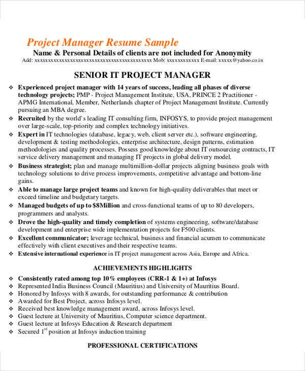 professional it project manager resume1