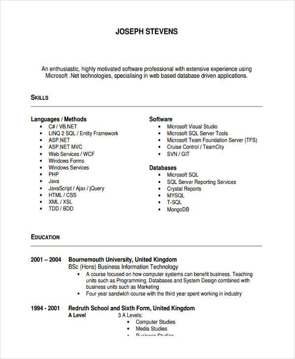 senior it developer resume1