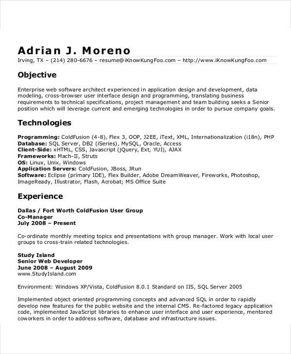 senior it developer resume2