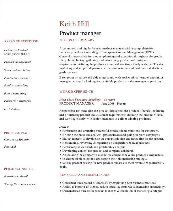 It Resume Design Templates  Free  Premium Templates