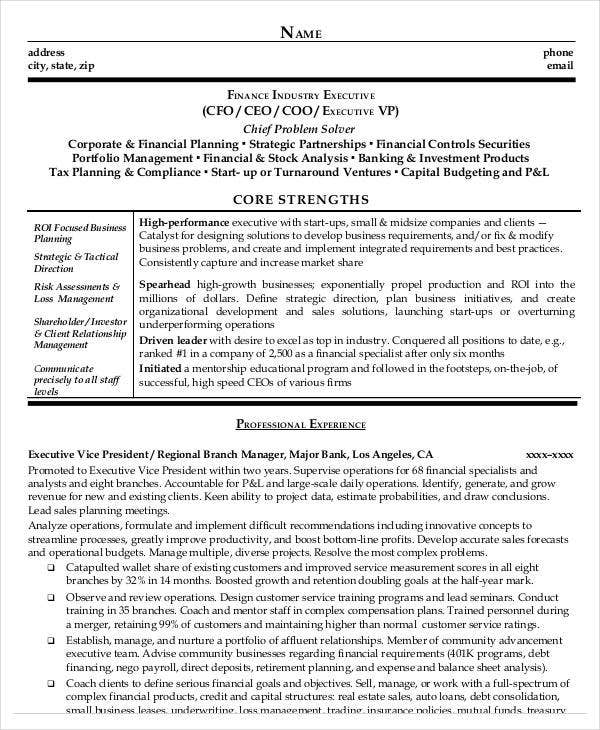 finance executive sample resume - Sample Resume Finance