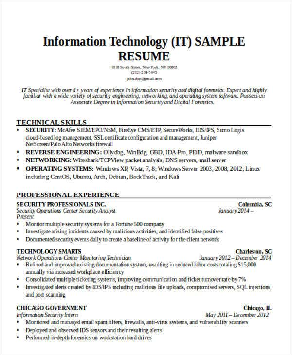 Resume Example For It Professional  Resume Template