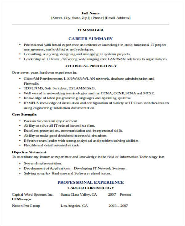 professional it manager resume3