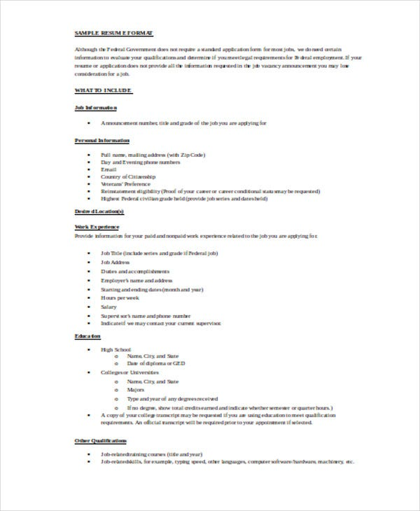 professional it resume format2