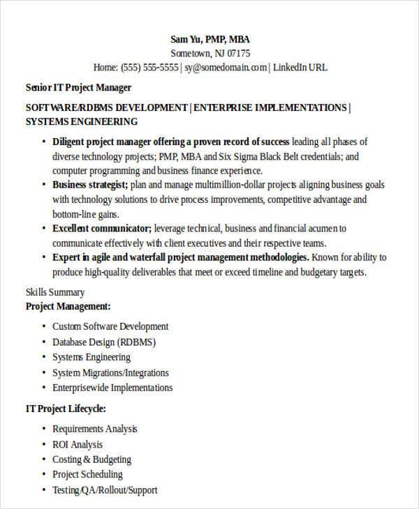 technical it manager resume