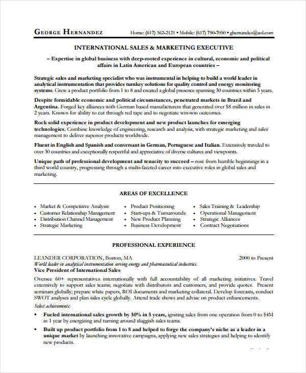 9 sales executive resume templates pdf doc free premium