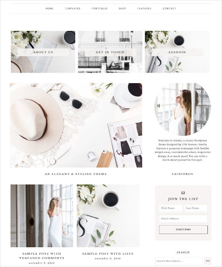 wordpress-ecommerce-theme
