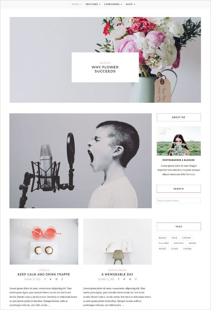 responsive-wordpress-blog-theme1