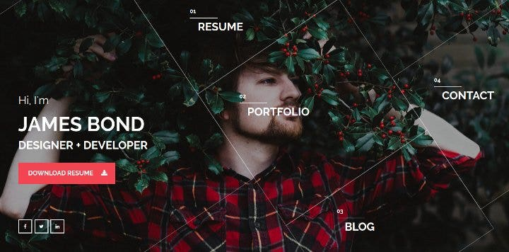 simple-wordpress-theme-resume-or-portfolio