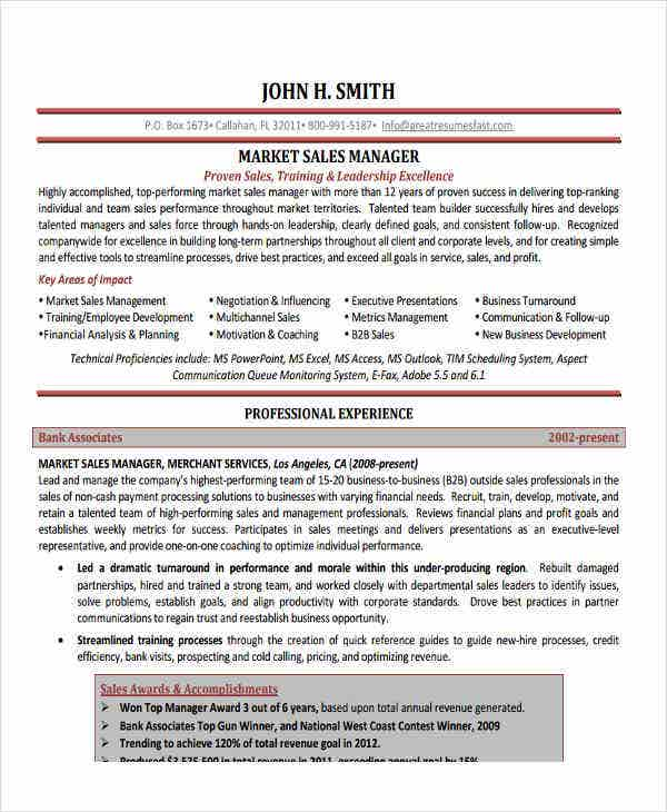 sales manager executive resume2