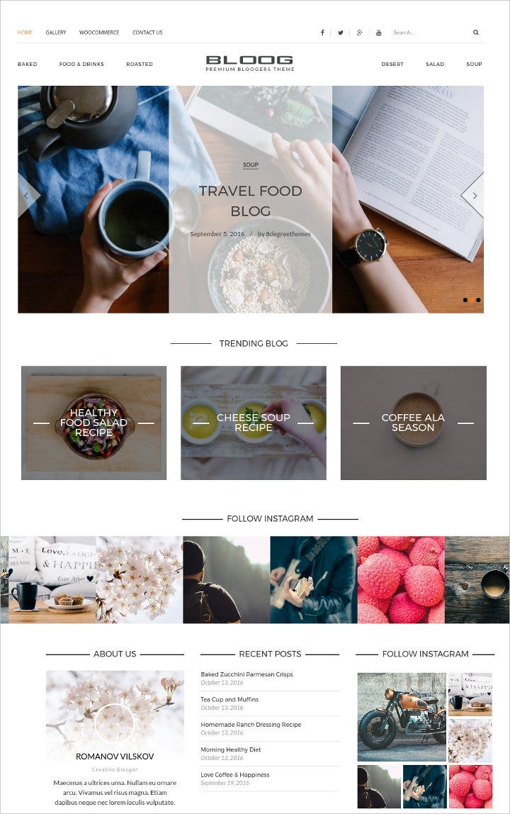 premium-wordpress-blog-theme