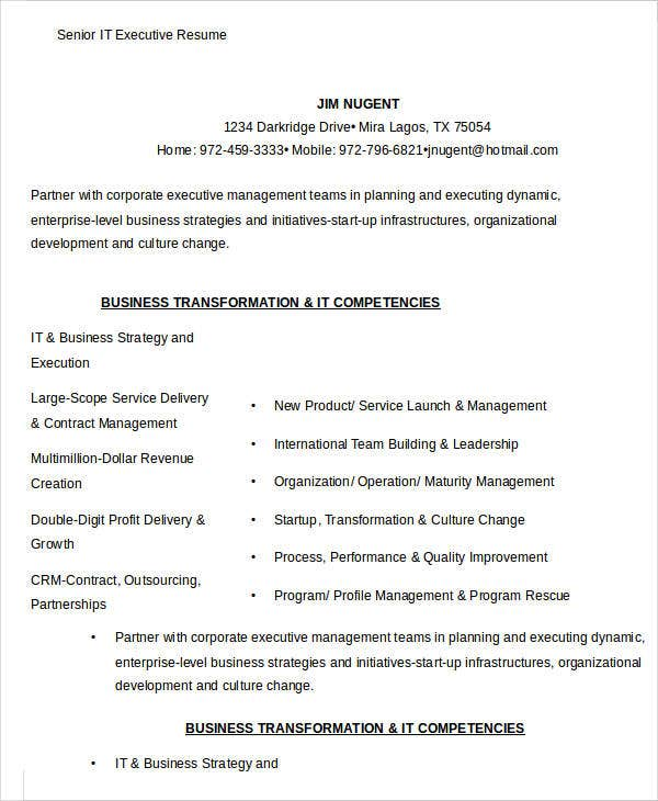 Senior IT Executive Resume Sample  It Executive Resume