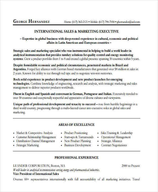 marketing sales executive resume8