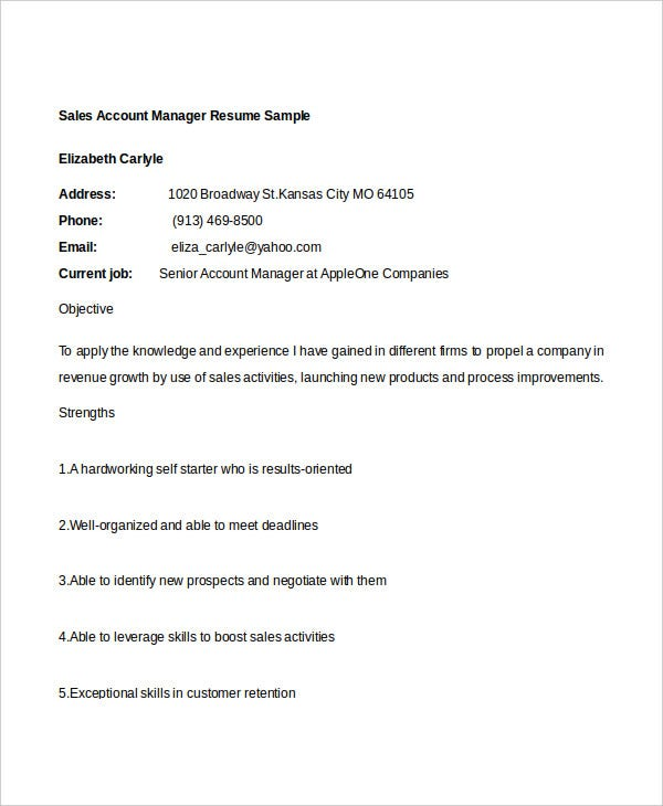 sales account manager resume8