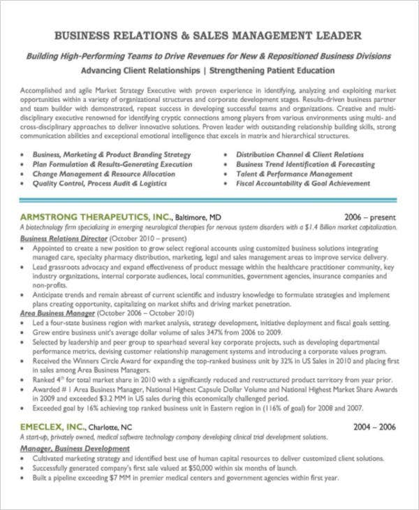 sales marketing manager resume2