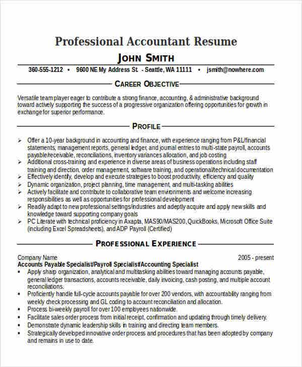 professional accountant resume