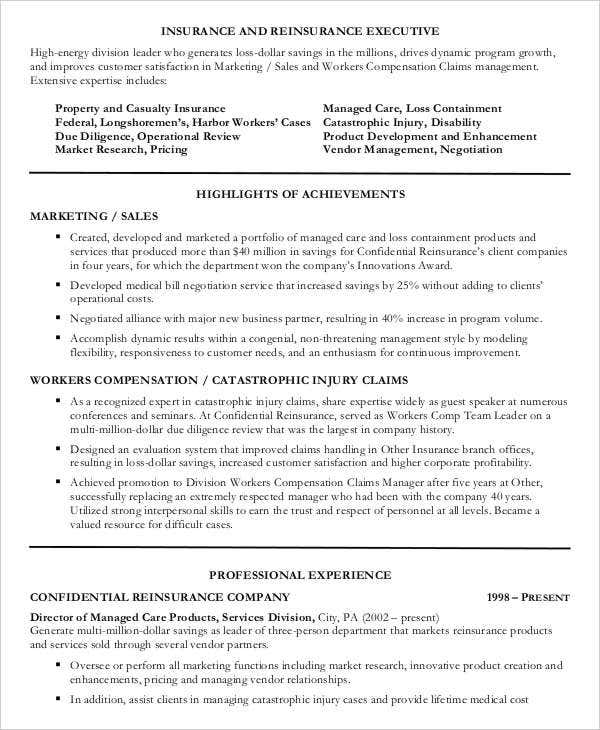 9+ Sales Executive Resume Templates - PDF, DOC | Free & Premium ...