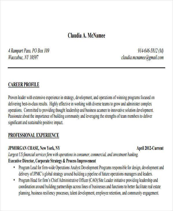 Investment Banking Executive Resume