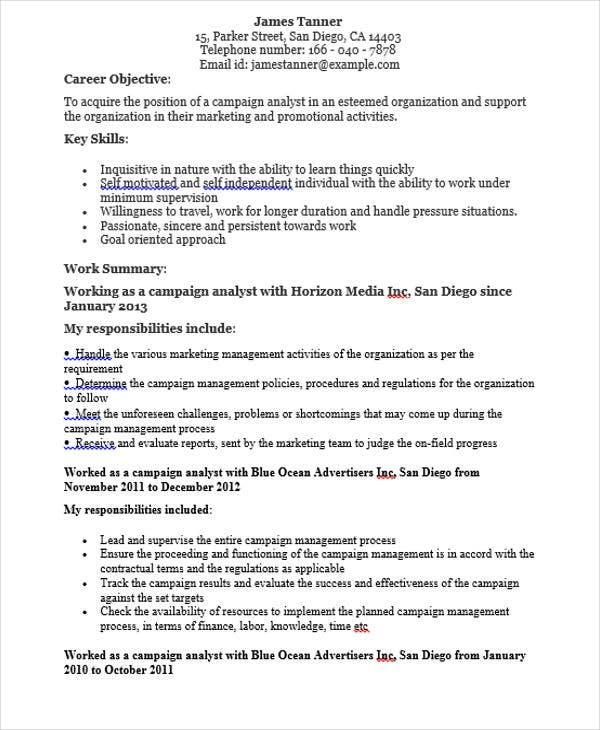 marketing campaign analyst resume2