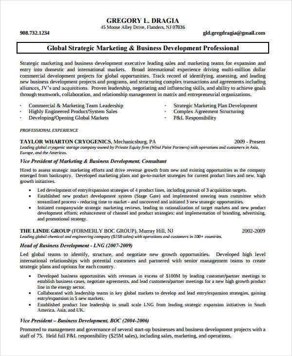 marketing business development resume1