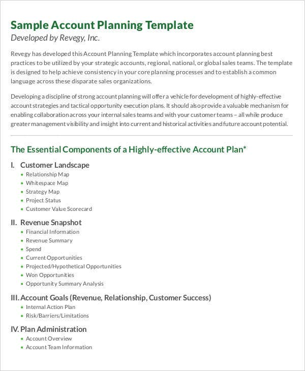 one page strategic account plan