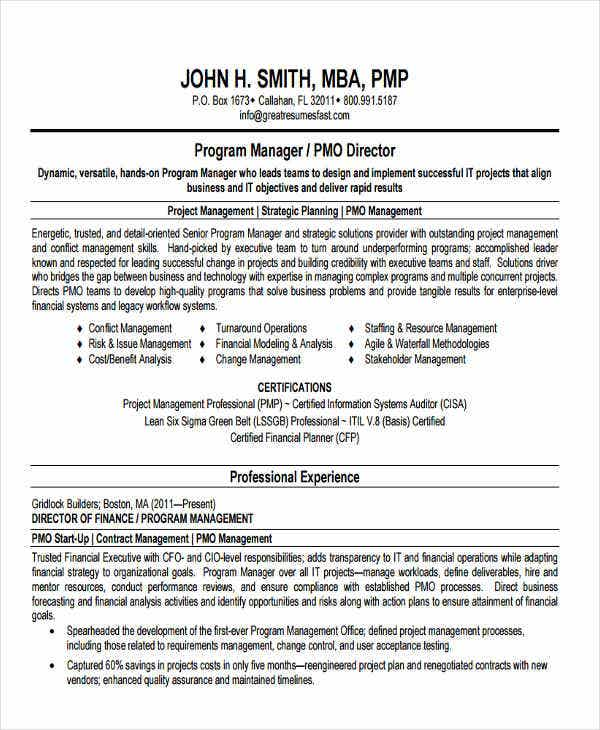 IT Program Director Resume  Program Director Resume