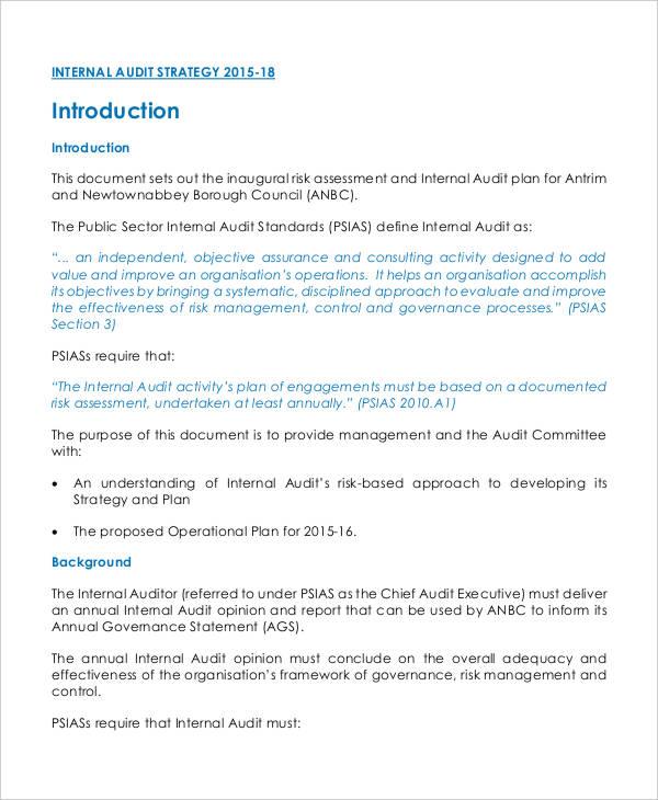 internal audit action plan1