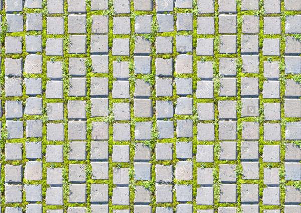 Grass Block Texture