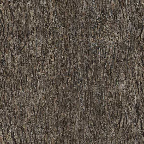 tileable wood bark texture