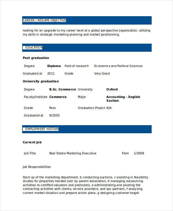 real estate marketing executive resume2