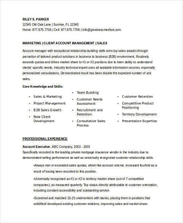 marketing account executive resume11