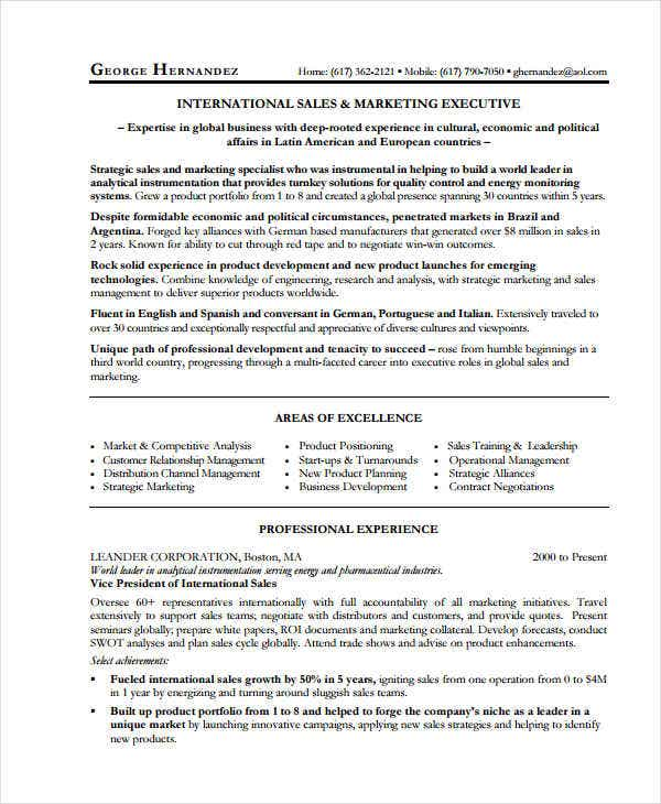 marketing sales executive resume18