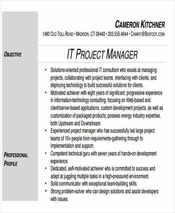professional it project manager resume3