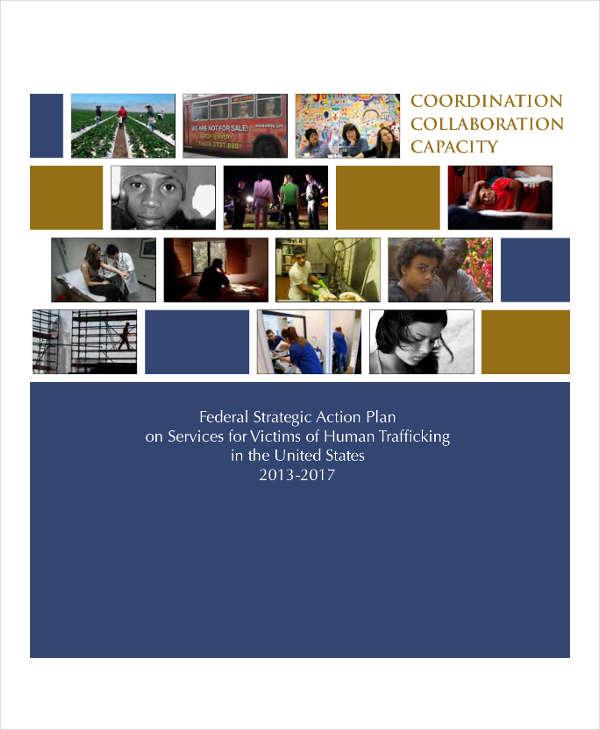federal strategic action plan