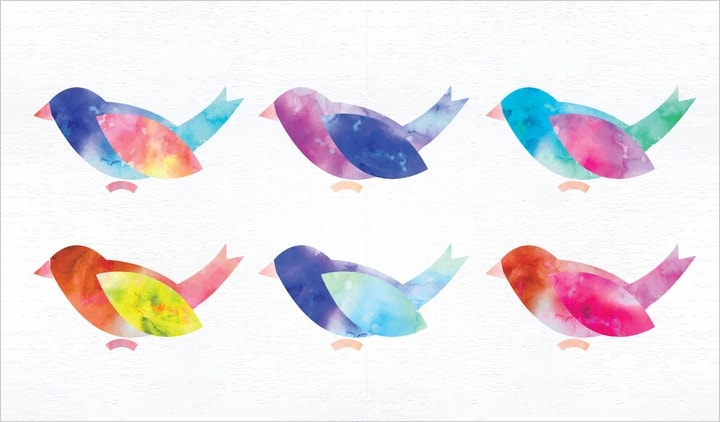 birds-vector-illustration