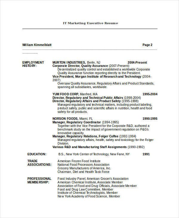 it-marketing-executive-resume