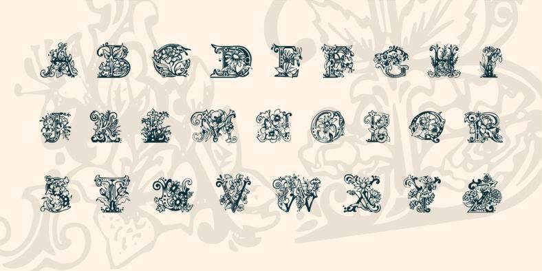 lime blossom  788x394